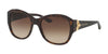 RALPH LAUREN RL8148 500313 DARK HAVANA Specs at Home