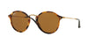 RayBan RB2447 1160 SPOTTED BROWN HAVANA Specs at Home