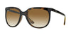 RayBan RB4126 710/51 LIGHT HAVANA Specs at Home