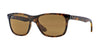 RayBan RB4181 710/83 LIGHT HAVANA (Polarized) Specs at Home