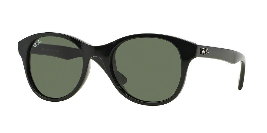 RayBan RB4203 601 BLACK Specs at Home