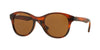 RayBan RB4203 820/73 SHINY STRIPED HAVANA Specs at Home