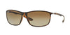 RayBan RB4231 894/T5 MATTE HAVANA (Polarized) Specs at Home
