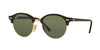 RayBan RB4246 901/58 BLACK (Polarized) Specs at Home