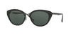 RayBan RB4250 601/71 BLACK Specs at Home