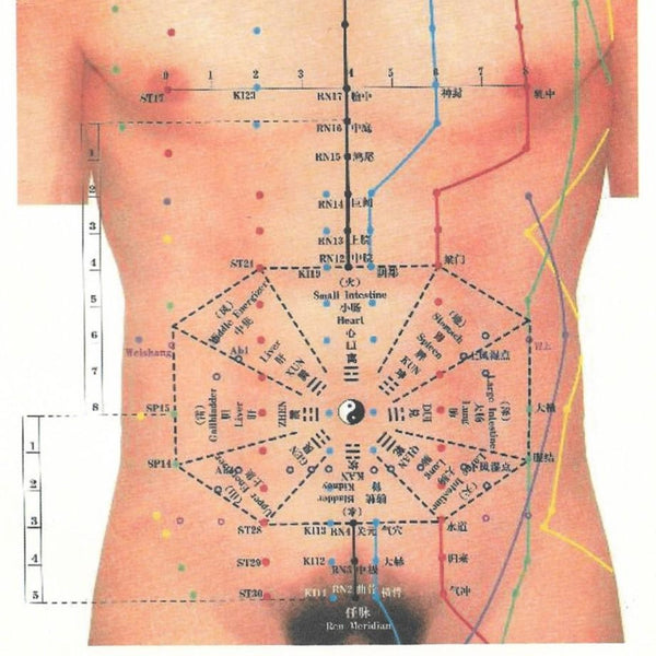 Abdominal Acupuncture, Palpation & Diagnosis (ADVANCED MODULE)