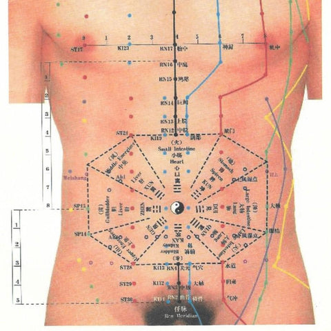 The Abdomen: Acupuncture, Massage, Palpation & Diagnosis