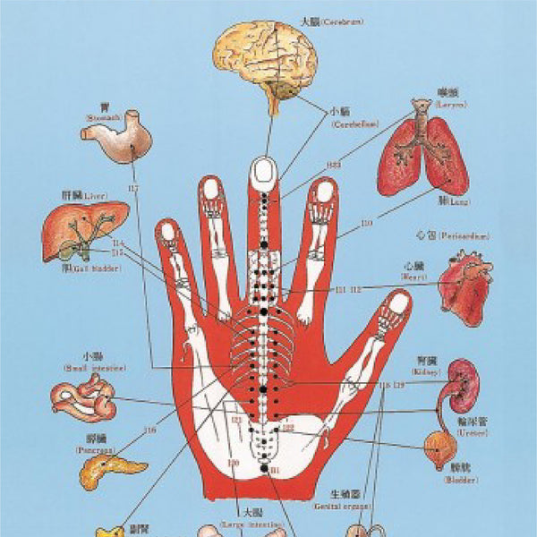 Introduction to Korean Hand Therapy