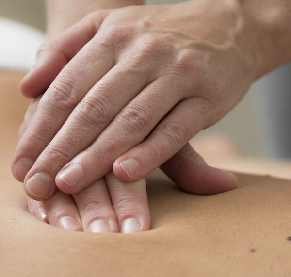 Abdominal Zang Fu Organ Massage (ADVANCED MODULE)