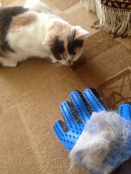 Cat Grooming Glove - Hair Remover and Massager