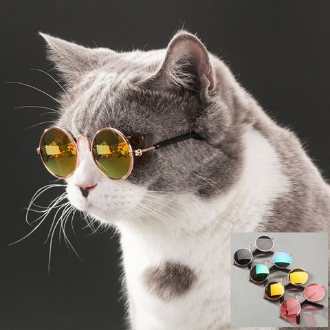Retro Round Shape Mirror Pet Cat Sunglasses