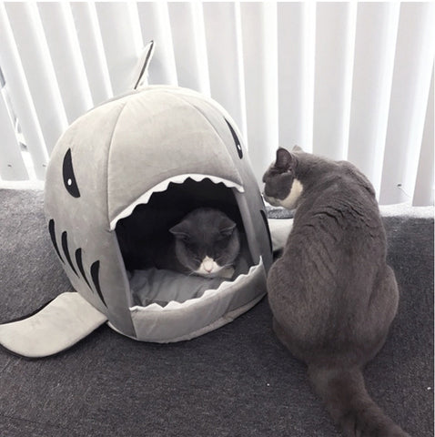 Soft And Cuddly Shark Cat Bed