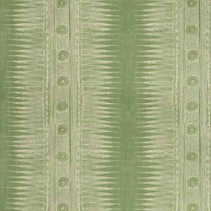 Indian Zag Fabric