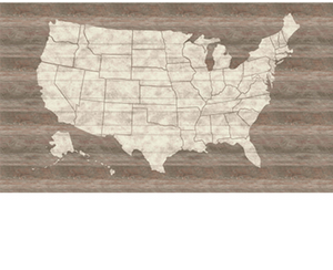 Rustic USA Map Mural