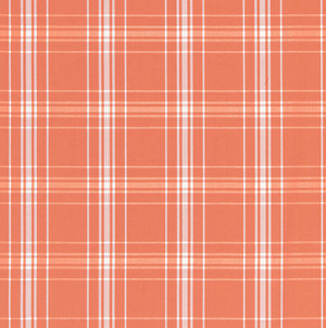 Belize Plaid Fabric