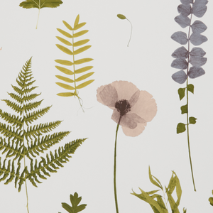 Botanica Leaf/Foliage/Vine Wallpaper