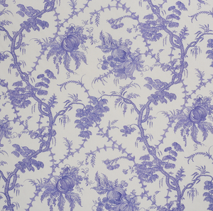 San Cristobal Toile Fabric