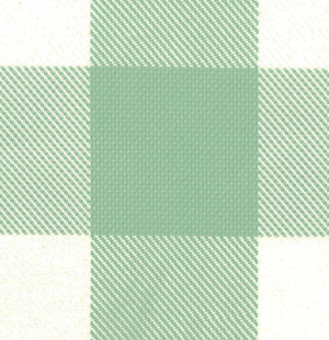 Notation Check Fabric