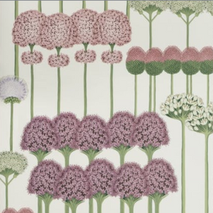 Allium Wallpaper