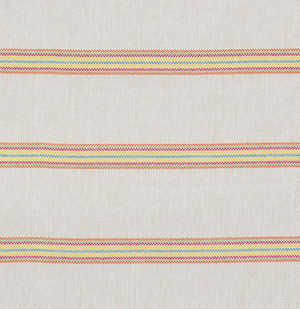 Garden Stripe Indoor/Outdoor Fabric
