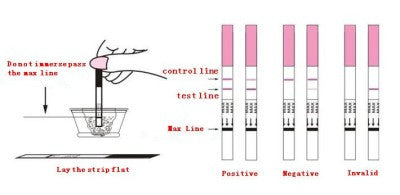 How to interpret a pregnancy strip test - are you pregnant?