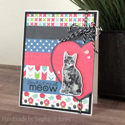 KITTY CAT LAYERED STAMP AND SENTIMENT SET - Gina Marie Designs