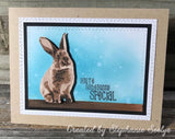 LAYERED BUNNY RABBIT STAMP SET - Gina Marie Designs