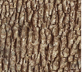 Square swatch fabric from Naturescapes collection in brown bark (brown bark textured fabric)