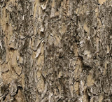 Square swatch fabric from Naturescapes collection in brown stone (light brown/grey textured look bark/stone fabric)