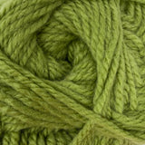 Patons Inspired Yarn swatch in Olive