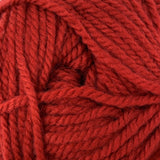 Patons Inspired Yarn swatch in Scarlet
