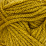 Patons Inspired Yarn swatch in Honey Spice (medium yellow)