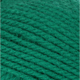 Emerald swatch of Patons Astra