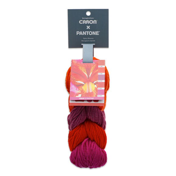 Caron X Pantone (5x20g) balls in colourway Spicy Blooms (reds and purples)
