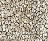 Square swatch The Great Outdoors Flannel in brown bark (dull brown tree texture printed fabric)
