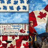 Group swatch Oh Canada themed printed fabrics in various colours/styles