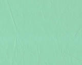 Oasis (pale green) swatch of Daytona (lightly wrinkled) vinyl