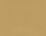 Square swatch textured vinyl in shade chamois (beige)