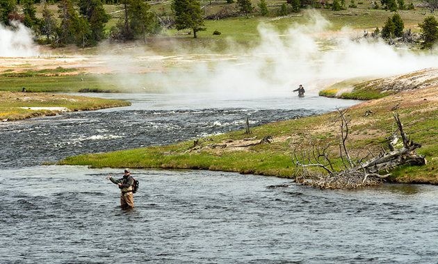 Top 5 Tips for a better Fly Fishing experience!