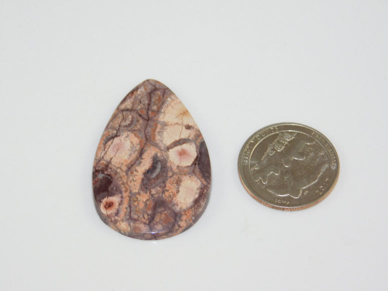 Bird's Eye Rhyolite Cabochon - Moroccan Village
