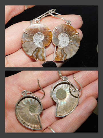 Ammonite Half Earrings (0.925 Sterling Silver)