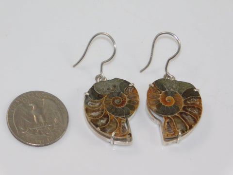 Fossilized Ammonite Earrings (0.925 sterling silver) - Moroccan Village