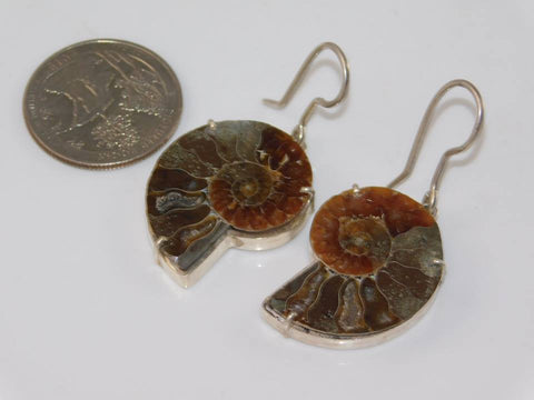Fossilized Ammonite Earrings  (0.925 Sterling Silver - Moroccan Village