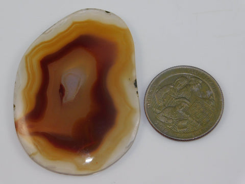 Montana Moss Agate Cabochon - Moroccan Village