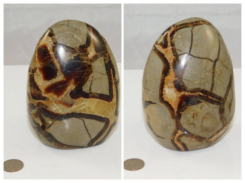 Septarian Free Form - Moroccan Village