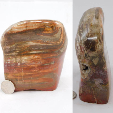Petrified Wood Mantle Piece - Moroccan Village