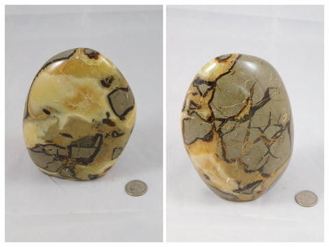 Septarian - Moroccan Village