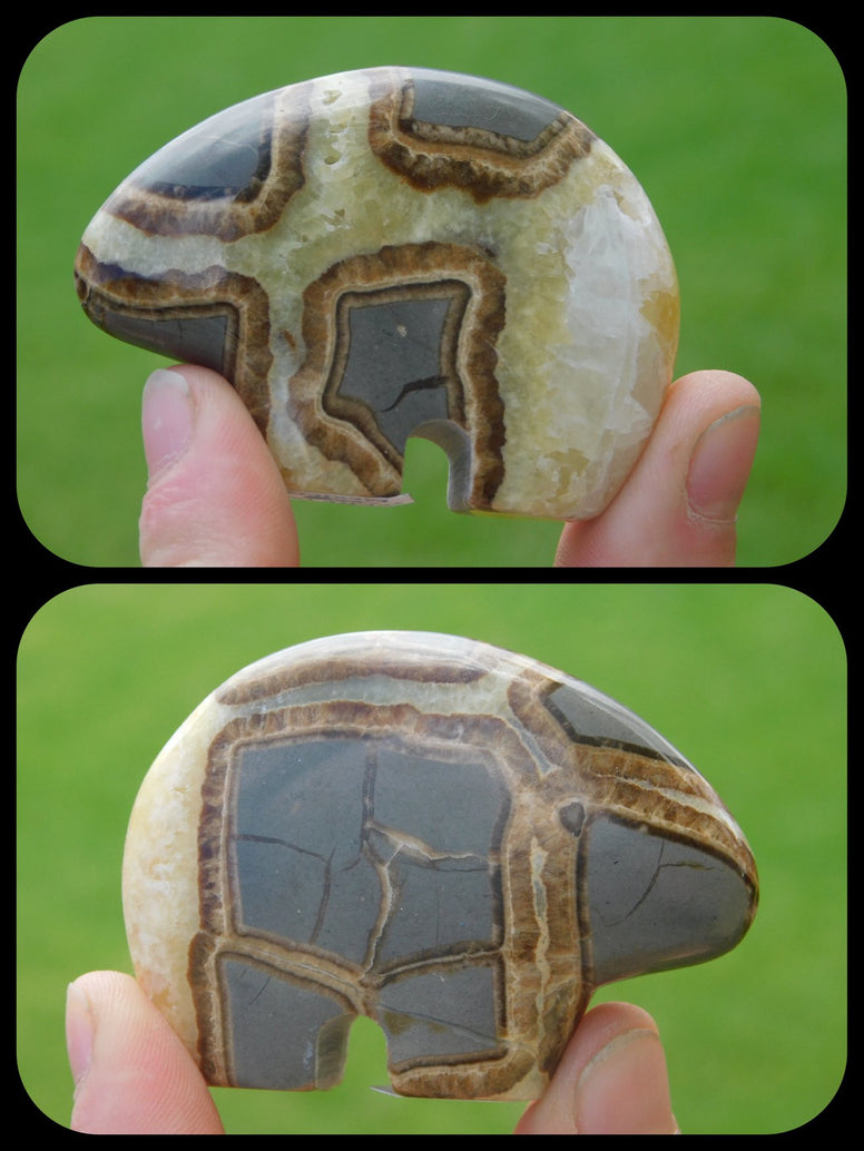 Septarian Nodule Bear - Moroccan Village