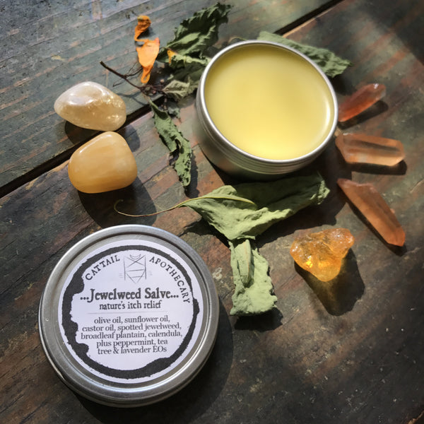 Jewelweed Salve // Nature's Itch Relief