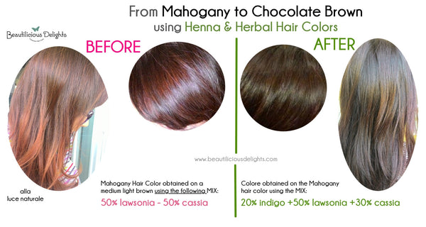 Cover grey hair naturally Mahogany Chocolate Brown using Henna Herbal Hair Colors